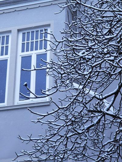 Winterlanschaften in Bremen, Birte Kühl Landschaftsfotografie Bremen